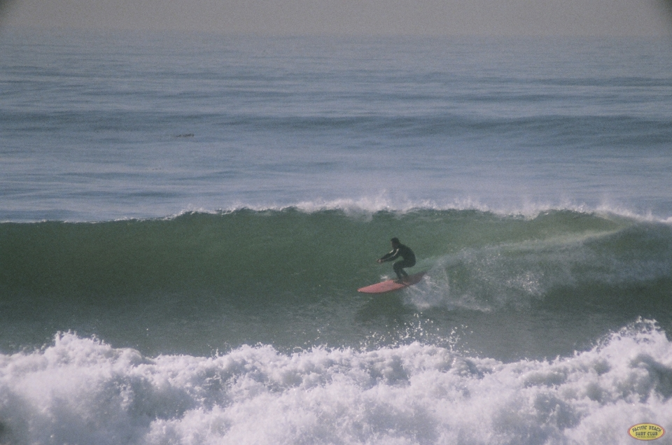 Another Ferdie photo from my archives, killin' it on a big day in PB!